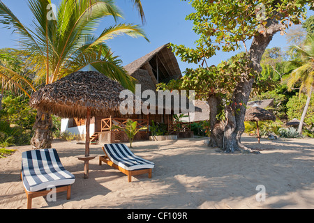 Deck chairs under umbrella and tropical vegetation - Stock Photo