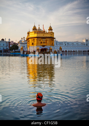 A Sikh man wearing a turban takes a bath in the pool surrounding the Golden Temple of Amritsar, Punjab, India - Stock Photo