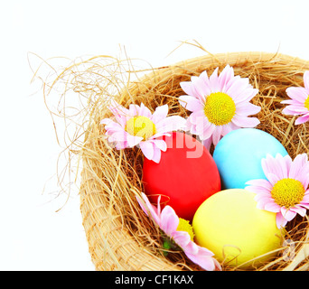Easter colorful eggs border with flowers isolated on white background - Stock Photo