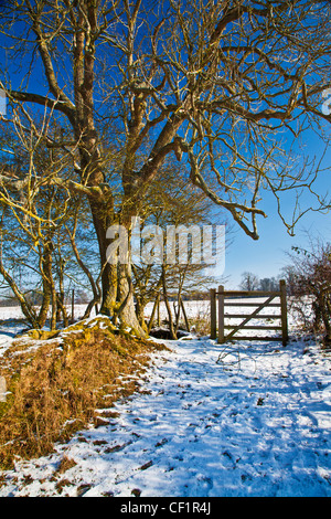 A bright snowy sunny Cotswold view near the Ampneys, Gloucestershire, England, UK - Stock Photo