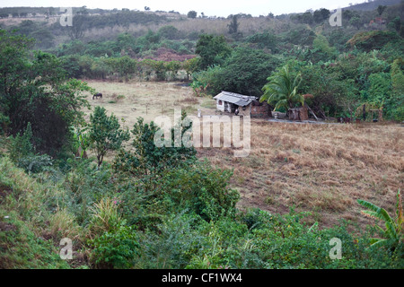 View of the countryside and a farmhouse from a steam train in Cuba - Stock Photo