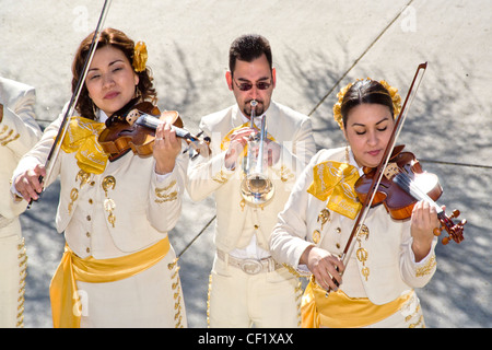 Wearing traditional costume, Mariachi musicians of both sexes play violin and trumpet in Tucson, AZ. - Stock Photo