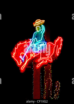 Cowboy on Bucking Bronco horse at Arcadia Rodeo, Florida ...