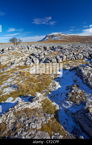 View over the White Scar limestone pavement towards Ingleborough, the second highest mountain in the Yorkshire Dales - Stock Photo