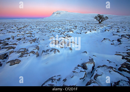 Winter view at sunset towards Ingleborough, one of the Yorkshire Three Peaks from White Scars, a large limestone - Stock Photo