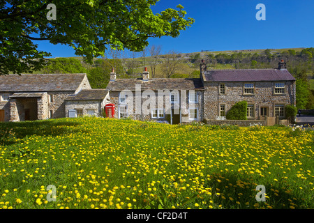 Stone houses by a dandelion covered village green at Arncliffe. - Stock Photo