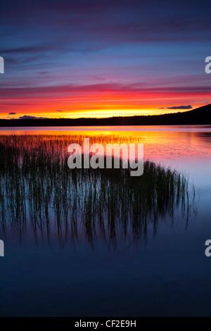 Summer sunset over Loch Morlich near Aviemore in the Cairngorms National Park.