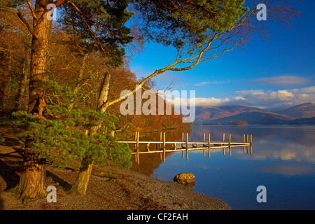 Autumnal view of Brandelhow Jetty reflected in the still water of Derwentwater in the Lake District National Park. - Stock Photo