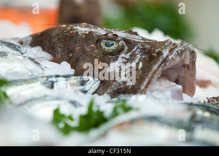 A view of fresh fish on display in Borough Market - Stock Photo
