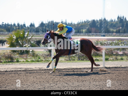 Jockey S Martin rides Lisselan Phraoah to victory in race 3 at Mijas Hipodromo Racecourse Fuengirola Costa del Sol - Stock Photo