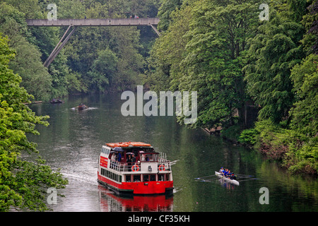 Prince Bishop River Cruiser and rowers on the River Wear. - Stock Photo