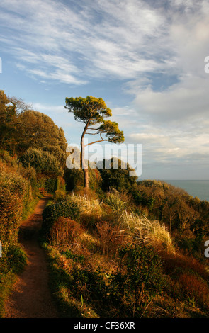 Rugged terrain on the coastal path from Traeth Bychan to ...