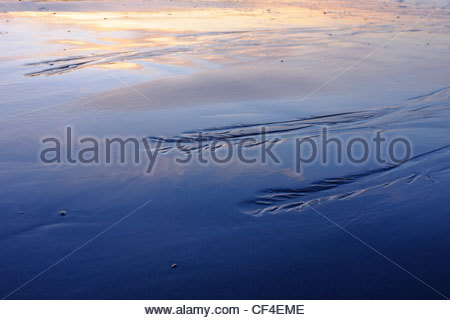 The receding tide results in drainage patterns on the beach at Brackett's Landing in Edmonds, Washington. - Stock Photo
