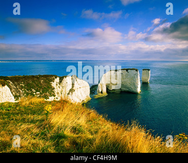 Old Harry Rocks, two chalk sea stacks located at Handfast Point, on the Isle of Purbeck. The chalk stacks mark the - Stock Photo