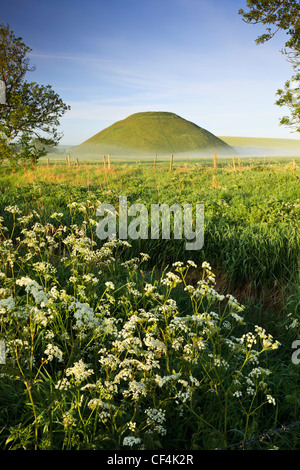 Silbury Hill, an artificial chalk mound, the tallest prehistoric human-made mound in Europe, on a summer morning, - Stock Photo