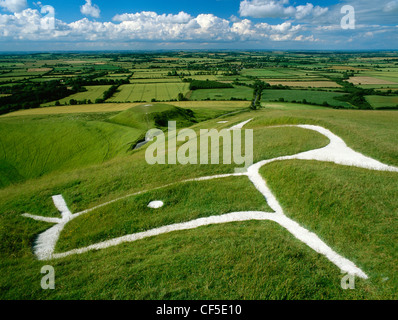 Head and eye of Uffington White Horse and Dragon, a chalk figure carved on the hillside above the flat-topped mound - Stock Photo