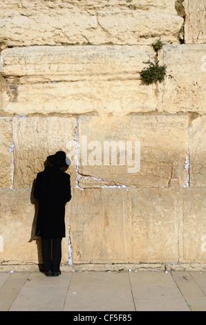 An Orthodox Jew prayers at the Western Wall in Jerusalem, Israel. - Stock Photo