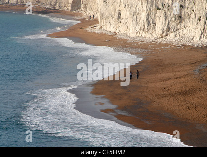 A couple walking a dog on Chesil Beach. - Stock Photo