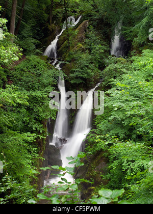 Stock Ghyll Force, a picturesque waterfall in the Lake District.