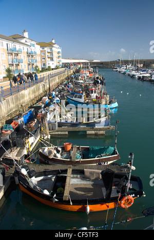 Small fishing boats moored in Brighton Marina. - Stock Photo