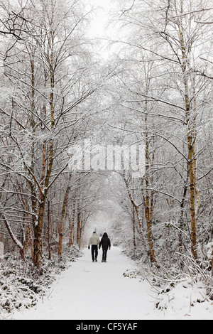 A couple walking hand in hand along a snow covered path through trees. - Stock Photo