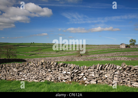 Field enclosures and barn at Litton in the Peak District National Park. - Stock Photo
