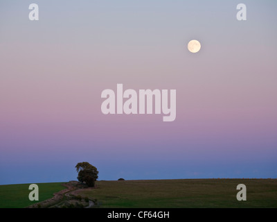 Full Moon rises in the twilight over Walbury Hill near Inkpen. - Stock Photo