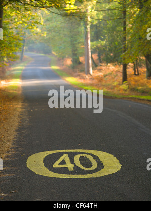 40 mph speed limit sign painted on a road in the New Forest National Park. - Stock Photo