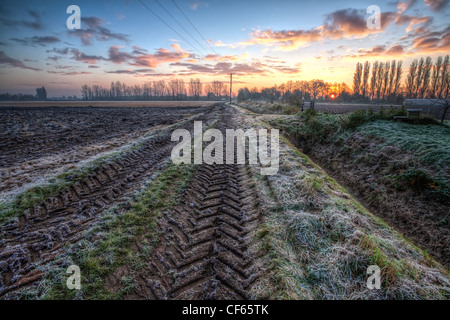 Sunrise over frost covered tractor tracks between recently ploughed fields. - Stock Photo