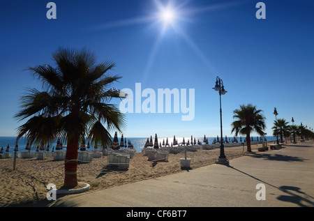 Concrete path with palms on empty sandy beach with folded umbrellas and sunbeds, burning sun and cloudless sky - Stock Photo