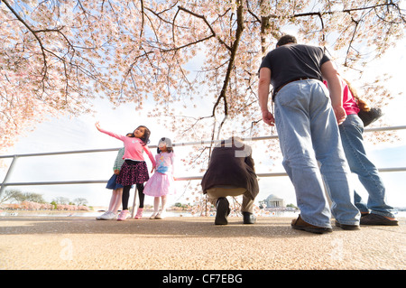 Three little girls posing under pink cherry blossoms with Jefferson Memorial. National Cherry Blossom Festival Washington - Stock Photo