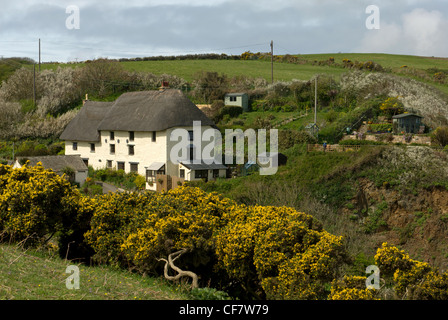 An unusual three storey thatched cottage near Church Cove.  The building, known as Mariners was once a Kiddywink - Stock Photo