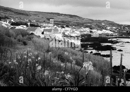 View of the town of Vila Franca do Campo with some aloe flowers on the background. Sao Miguel, Azores islands - Stock Photo
