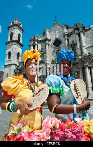 Catedral de la Virgen Maria de la Concepcion Inmaculada de la Habana Plaza de la Catedral Havana Cuba - Stock Photo