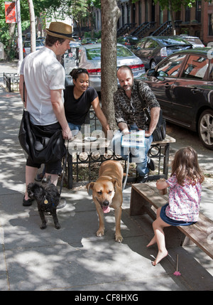 People and dogs both enjoy a leisurely Sunday morning outside in the Fort Greene area of Brooklyn. - Stock Photo