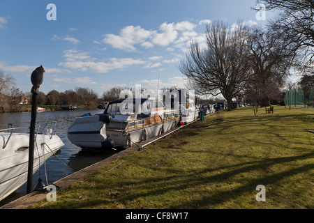 Pleasure boats moored in River Thames near Teddington lock in early spring. Wooden owl on pole. - Stock Photo