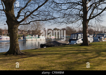 Moored boats on River Thames near Teddington Lock in early spring. - Stock Photo