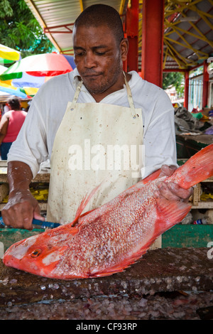 Man descaling fresh Red Snapper fish in the Sir Selwyn Clark fish market, Victoria, Mahe Island, Seychelles - Stock Photo