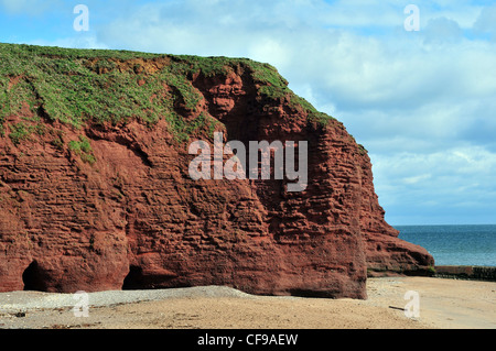 A cliff of Old Red Sandstone at Langstone Rock, Dawlish, South Devon - with caves eroded into the base. - Stock Photo