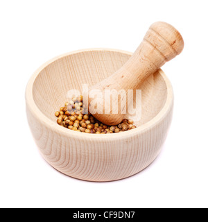 Pestle and mortar with coriander seeds - Stock Photo