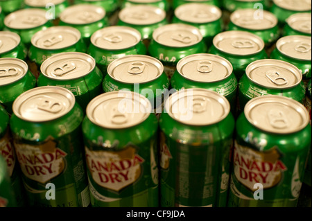 Cans of Canada Dry Ginger Ale seen in New York on Saturday, February 25, 2012. (© Frances M. Roberts) - Stock Photo