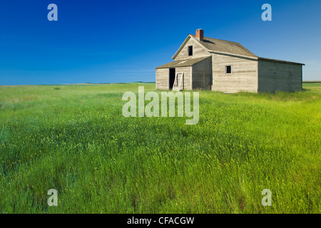 Old building in field near Leader, Saskatchewan, Canada. - Stock Photo