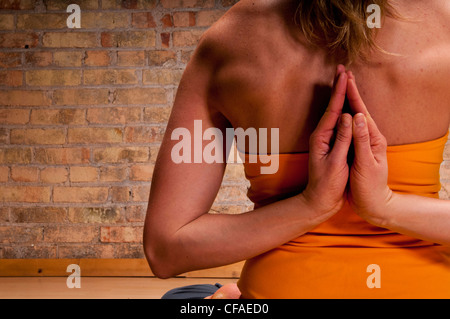 Close up of womans hands in yoga pose - Stock Photo