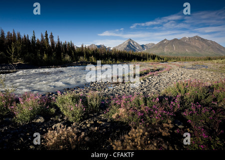 Looking Quill Creek toward Quill Peak other - Stock Photo