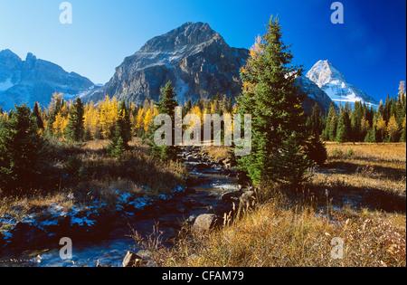 Mount Assiniboine Provincial Park in Fall, British Columbia, Canada. Stock Photo