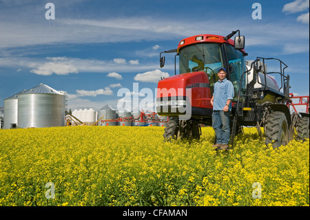 farmer in bloom stage canola field with high clearance sprayer, near Dugald, Manitoba, Canada - Stock Photo