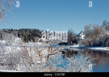 Silver thaw on frosty branches along Hunter River, Prince Edward Island, Canada. - Stock Photo