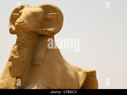 Avenue of sphinxes at the entrance of the great temple of Karnak dedicated to the worship of Amun, in the city of - Stock Photo