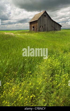 Old, rustic building near Leader, Saskatchewan, Canada - Stock Photo