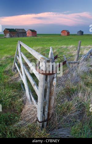Old, rustic buildings in field near Leader, Saskatchewan, Canada - Stock Photo